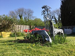 Garden sculpture - Roe deer Devon